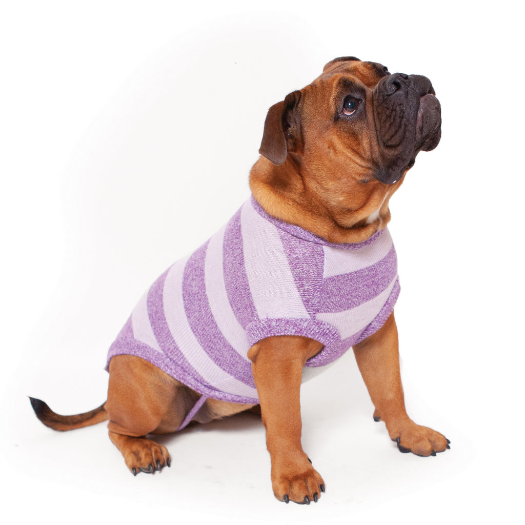 Lilly Pilly Soft Knit Jumper - Kazoo Pet Co