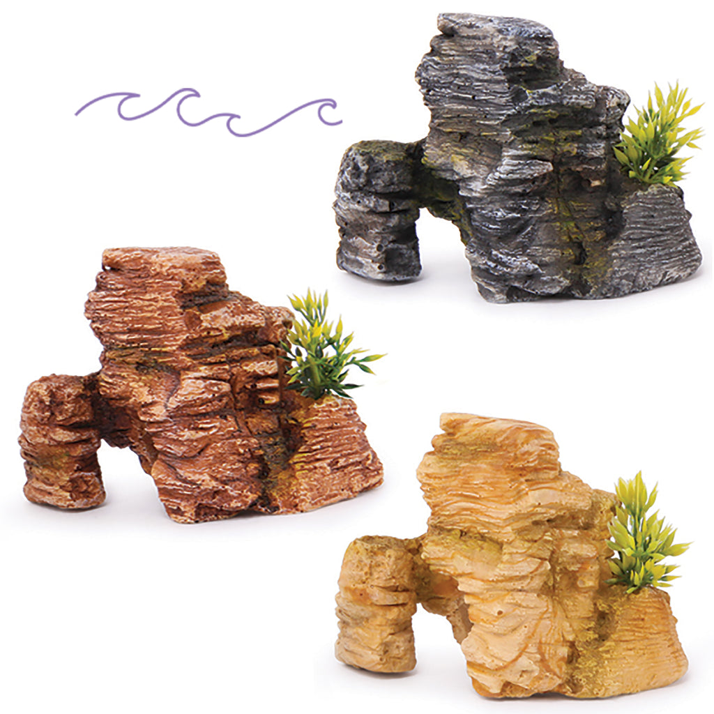 Mineral Rocks With Plants