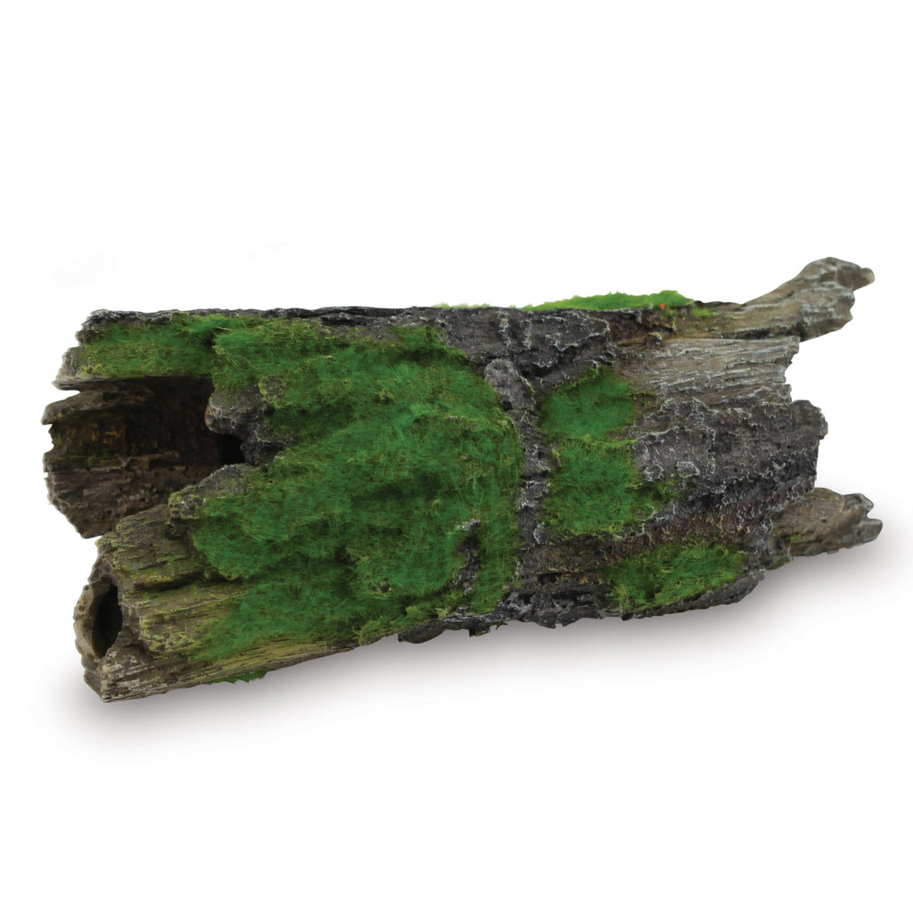 Driftwood With Textured Moss