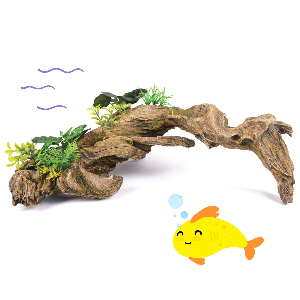 Driftwood with Plants