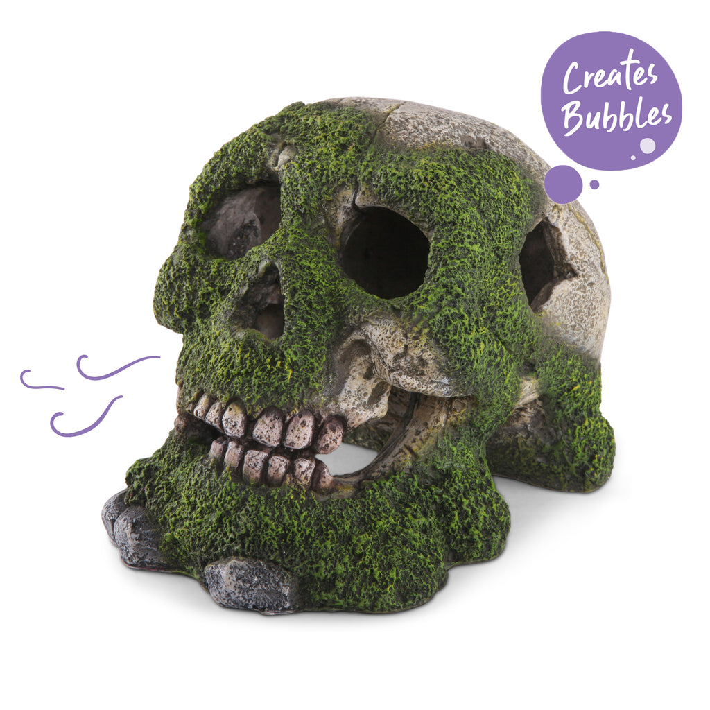 Bubbling Skull With Moss