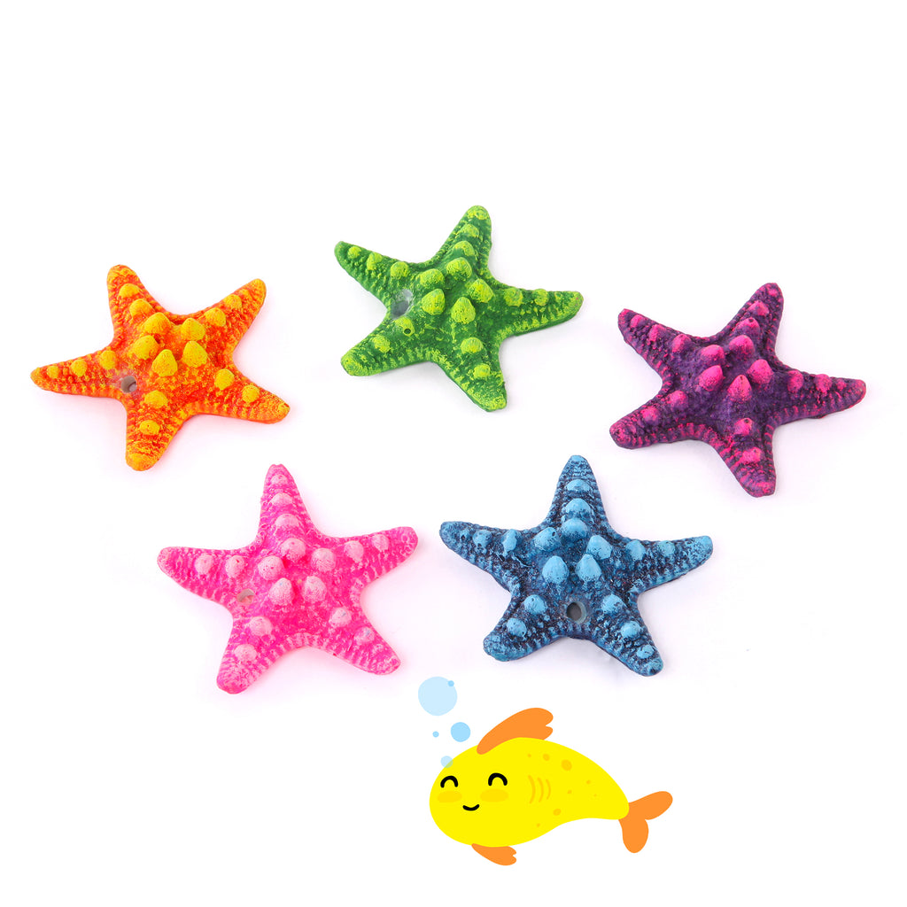 Starfish 5 Pack
