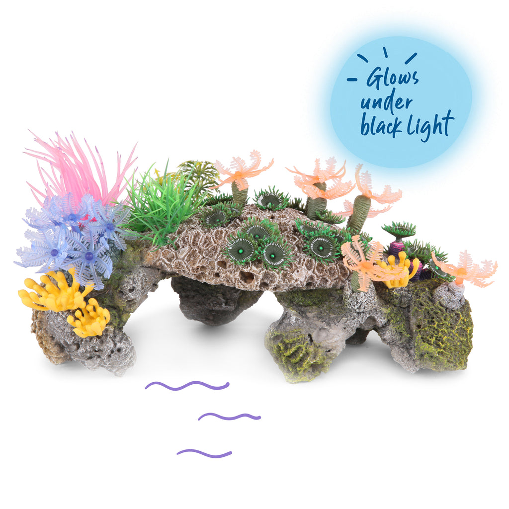 Pumice Stone Hideout With Plants