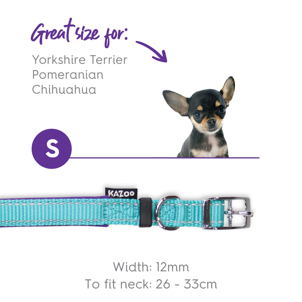 Active Collar - Aqua & Purple - Kazoo Pet Co