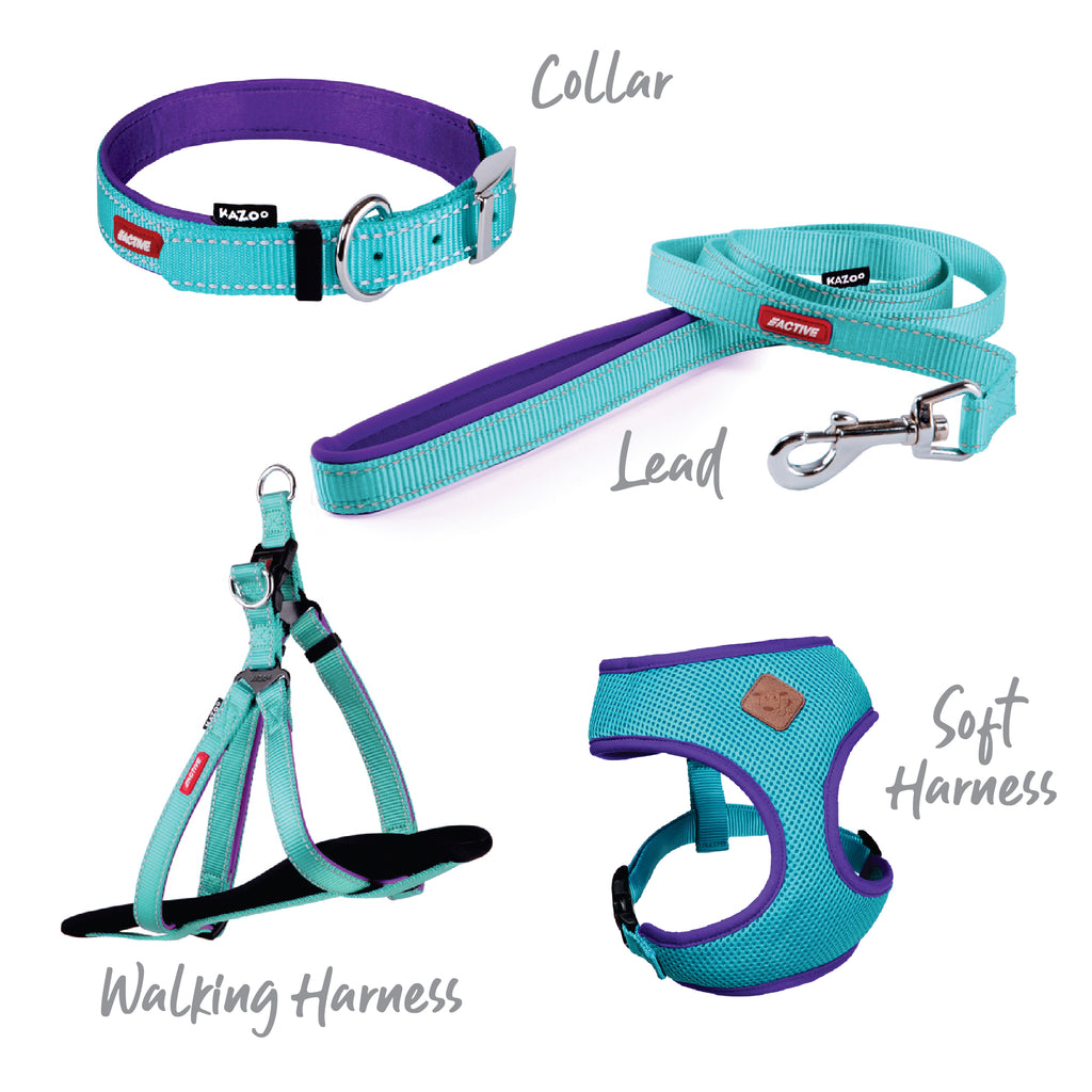 Active Soft Walking Harness - Aqua & Purple - Kazoo Pet Co