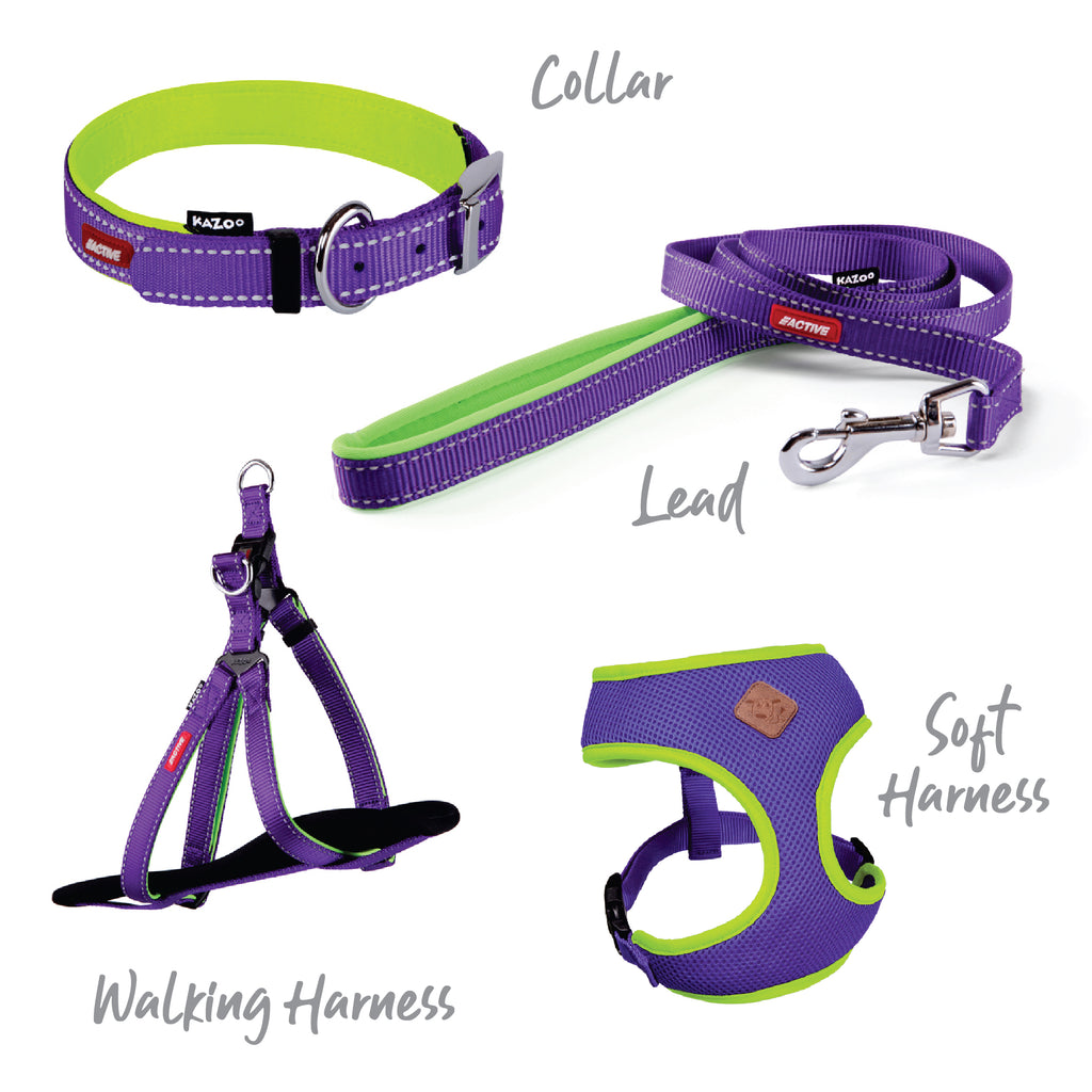 Active Walking Harness - Purple & Lime - Kazoo Pet Co
