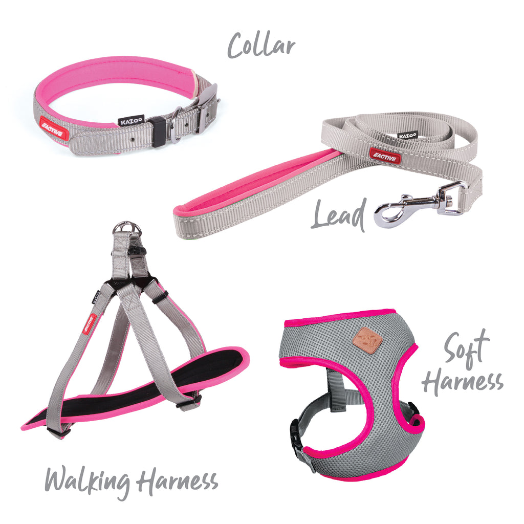 Active Collar - Silver & Pink - Kazoo Pet Co