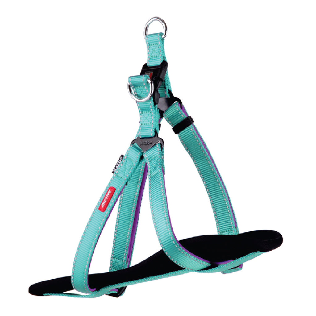 Active Walking Harness - Aqua & Purple - Kazoo Pet Co