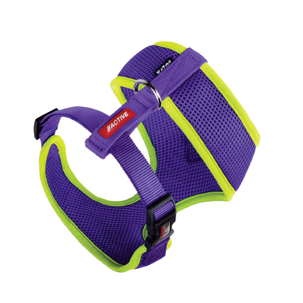Active Soft Walking Harness - Purple & Lime - Kazoo Pet Co