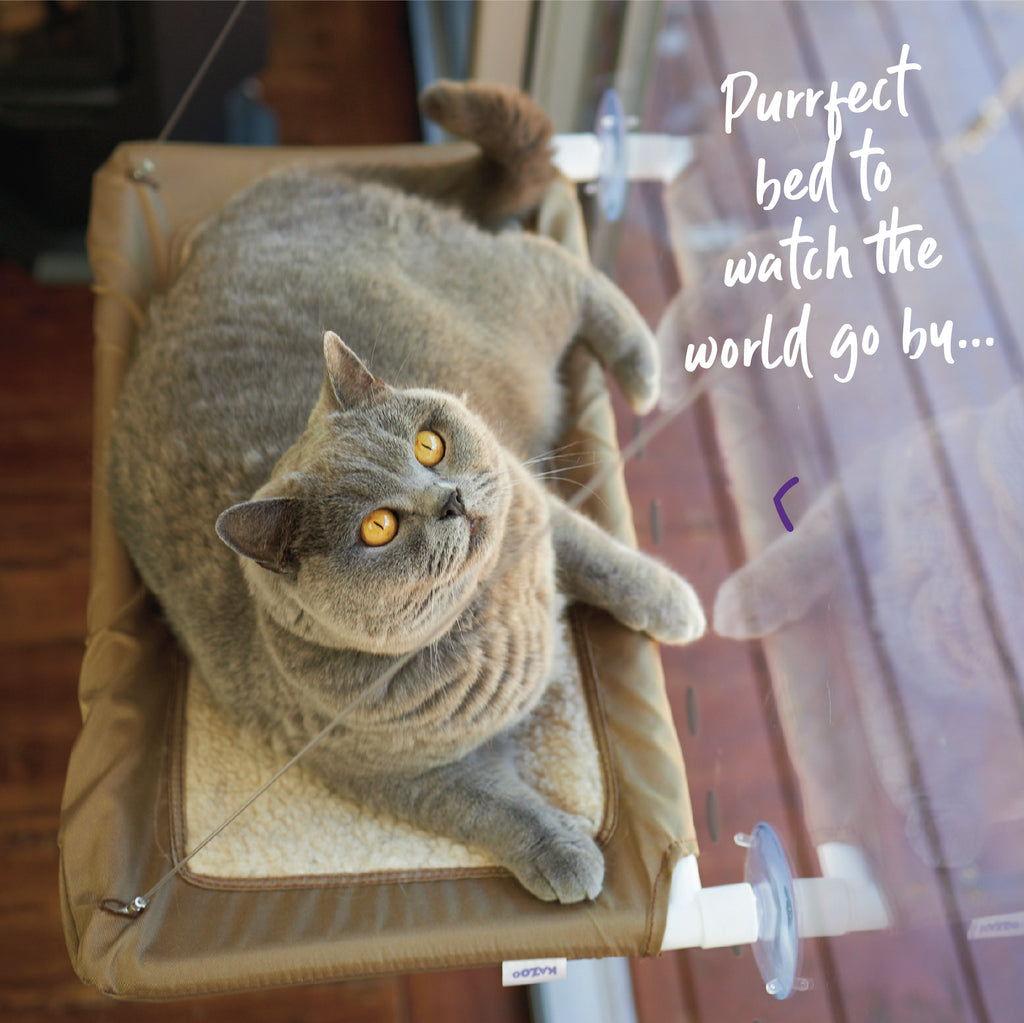 The Lookout Deluxe Window Cat Bed - Kazoo Pet Co