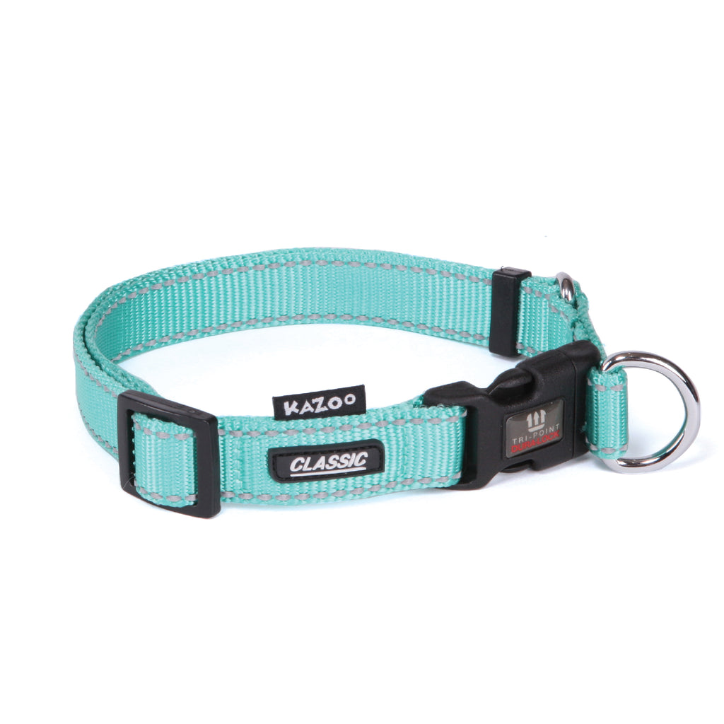 Classic Adjustable Collar - Mint - Kazoo Pet Co