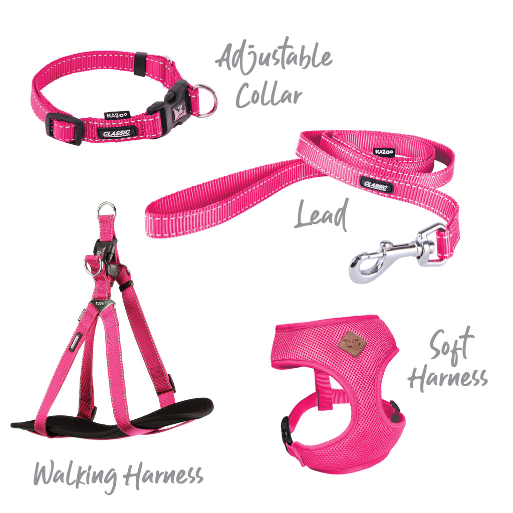 Classic Walking Harness - Pink - Kazoo Pet Co