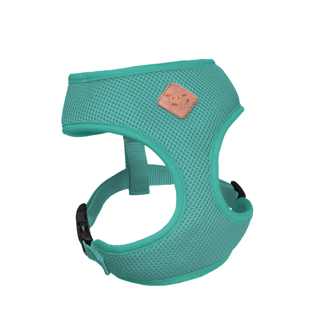 Classic Soft Walking Harness - Mint - Kazoo Pet Co