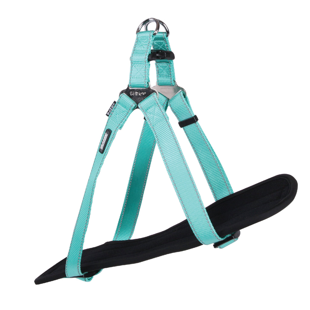Classic Walking Harness - Mint - Kazoo Pet Co