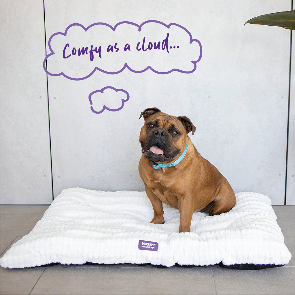 Cloud Cushion Bed - Cream - Kazoo Pet Co