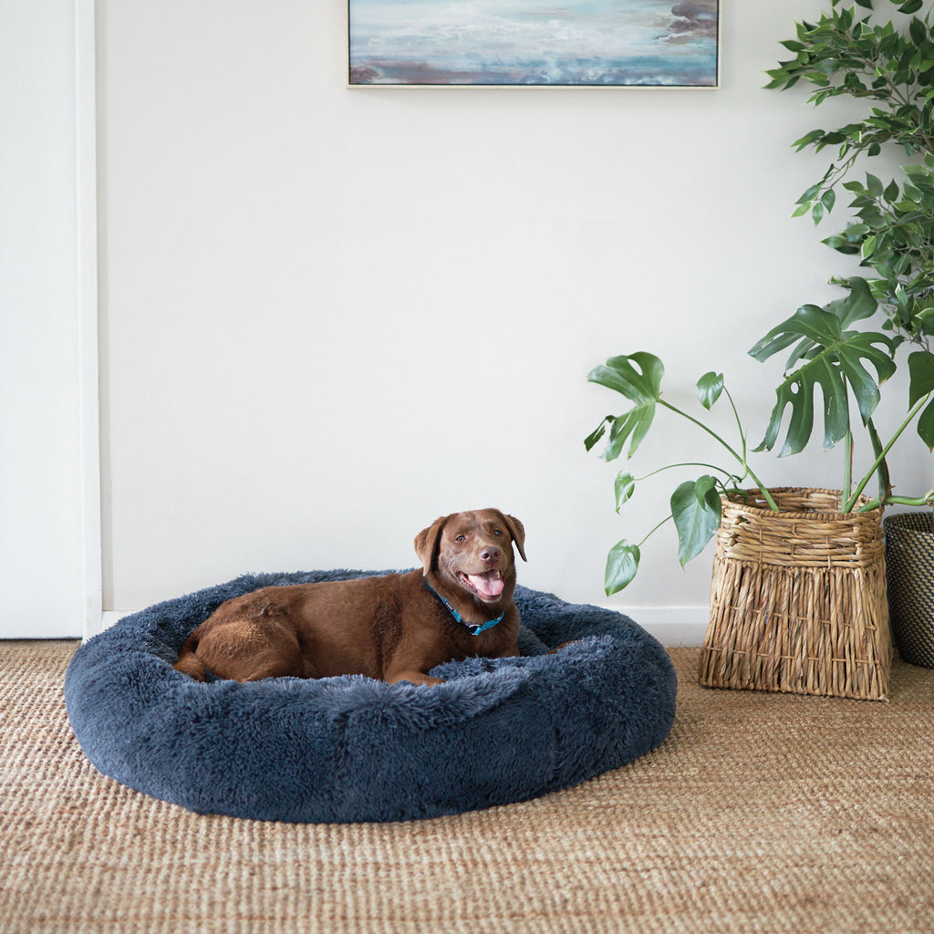 Kitty Peacock Bed - Storm Grey