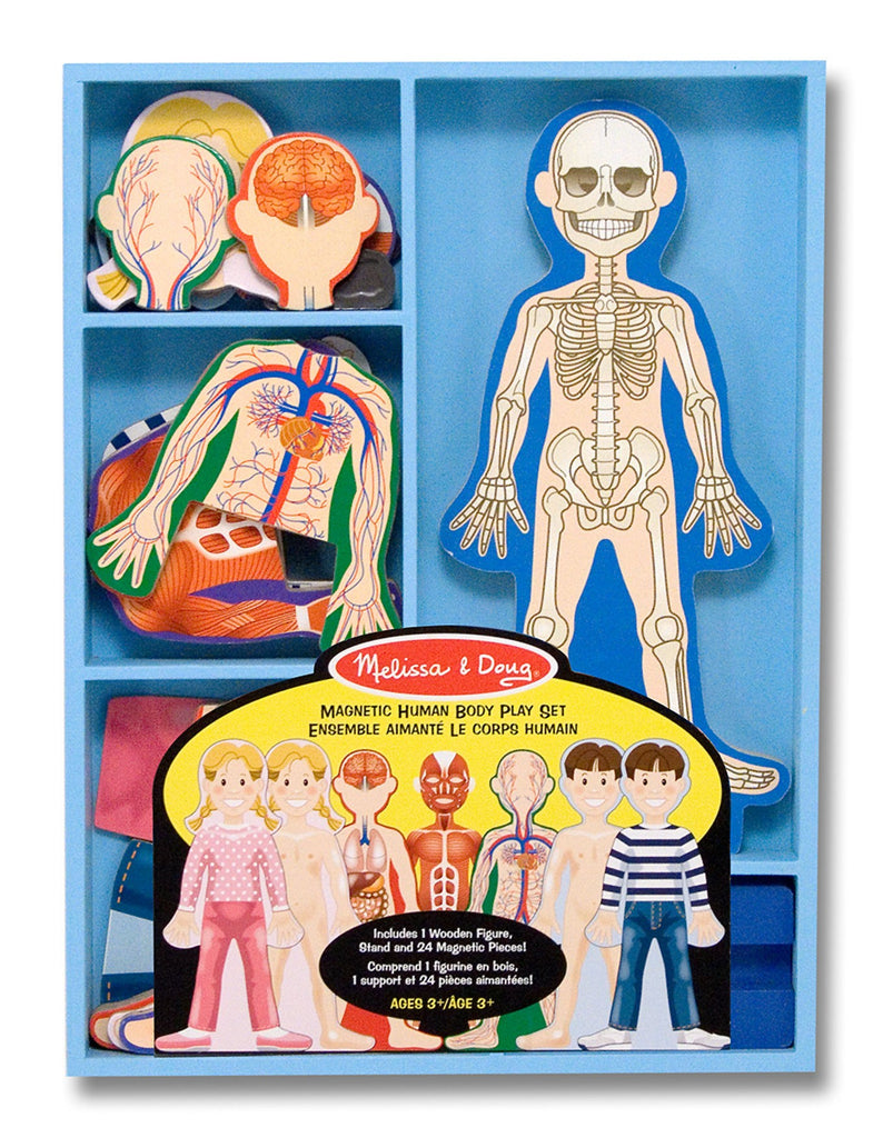 3589 Melissa & Doug Magnetic Human Body Play Set