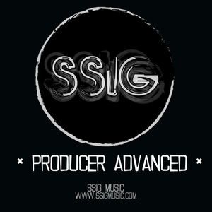 PRODUCER ADVANCED - MUSIC PRODUCTION COURSE 70H