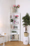 Rockwall White Bookshelf