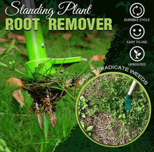 Load image into Gallery viewer, Standing Plant Root Remover