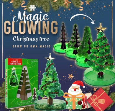 Miracle Growing Christmas Tree - ZZSales