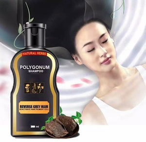 Japanese Growth Darkening Shampoo
