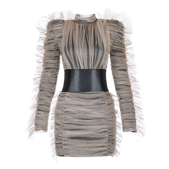 High Collar Belted Mesh Dress