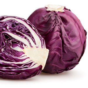 Red Cabbage Red Ball (OP)