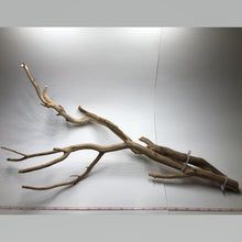 "Load image into Gallery viewer, Manzanita Driftwood (Large: Approx. 24"")"