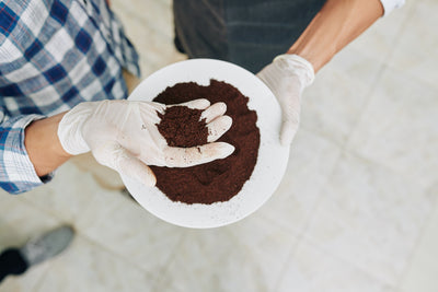 The best way of using coffee grounds before throwing them in garbage