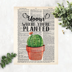 Bloom Where You're Planted with a cactus with a single bloom in a terracotta pot printed on a dictionary page
