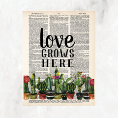 Love grows here printed above a row of potted cactus