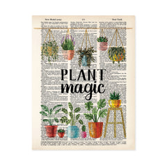 plant magic text with hanging plants above and potted plants below printed n a dictionary page