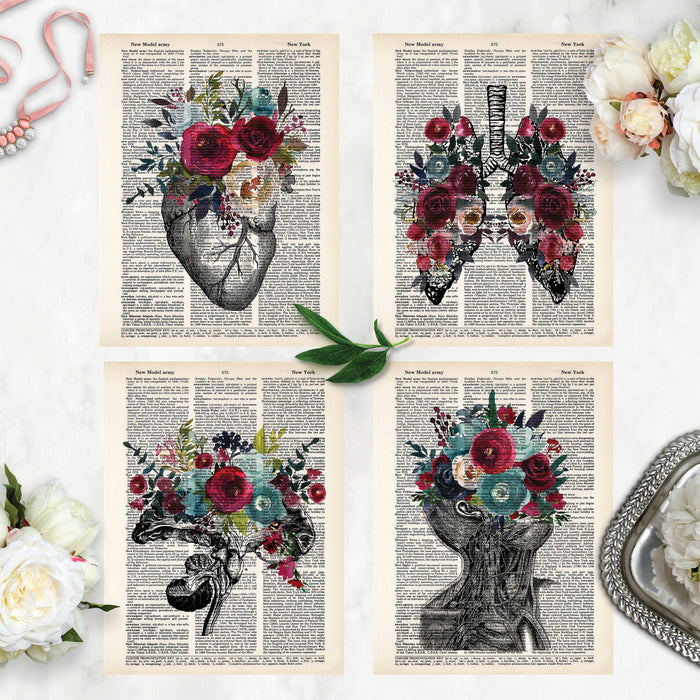 value pack of four dictionary prints includes vintage etching of heart, lungs, brain cross section, and neck all with flowers in the blue and red color scheme on dictionary paper