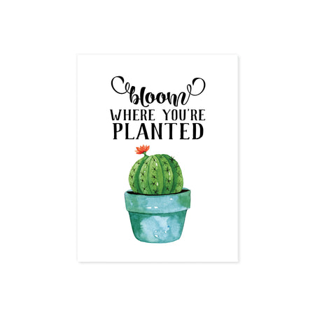 bloom where you're planted quote above a blue plant pot with a prickly cactus with a single peachy colored flower blooming on matte white paper fun art