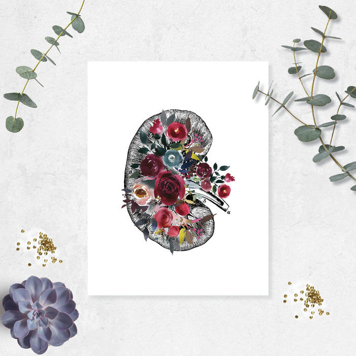 Vintage etching the cross section of a kidney decorated with watercolor flowers in blues and reds printed on matte white paper