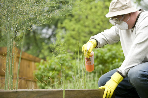 A man spraying chemicals on weeds