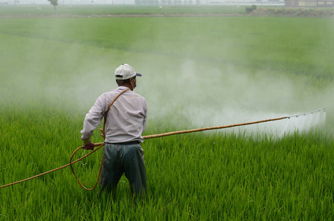 A person applying pesticides