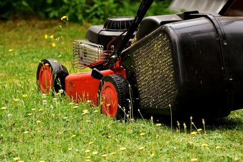mowing the weeds