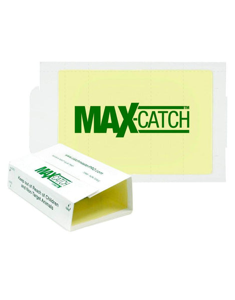 Traps - Catchmaster MaxCatch Giant Glue Boards 24GRB