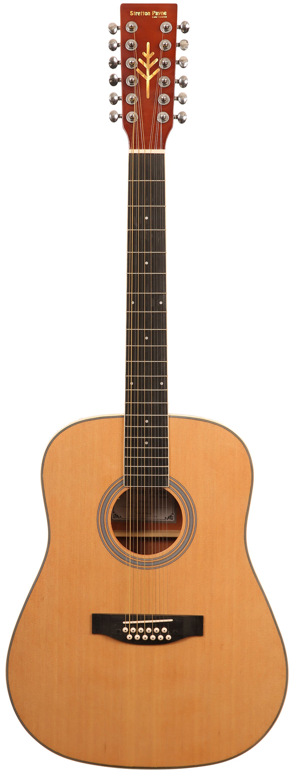 12 String Acoustic