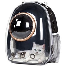 Load image into Gallery viewer, Astronaut Pet Bubble