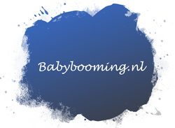 Babybooming.nl