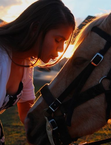 BeneFab Valentine Special: Pampering Your Horse