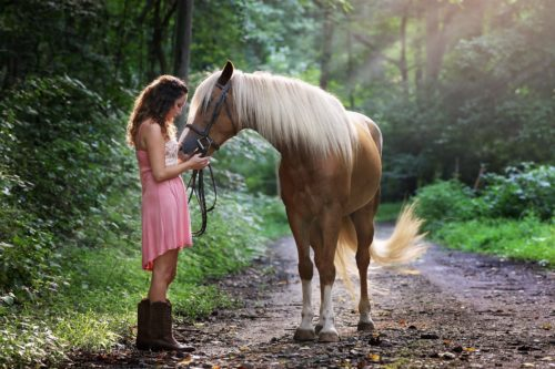 4 Great Ways to Celebrate Friendship Day with Your Horse