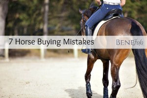 7 Horse Buying Mistakes