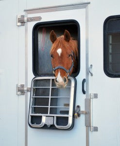 Winter Horse Trailering Tips