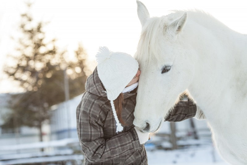 Setting New Year's Resolutions with Your Horse