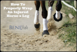 How to properly wrap an injured horse's leg