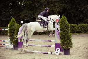 show-jumping-594156_1280